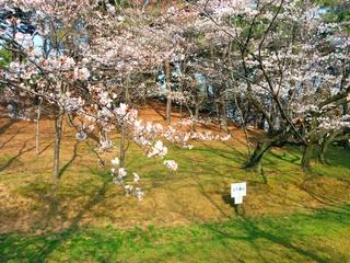 2014-03-29 15.38.48.jpg